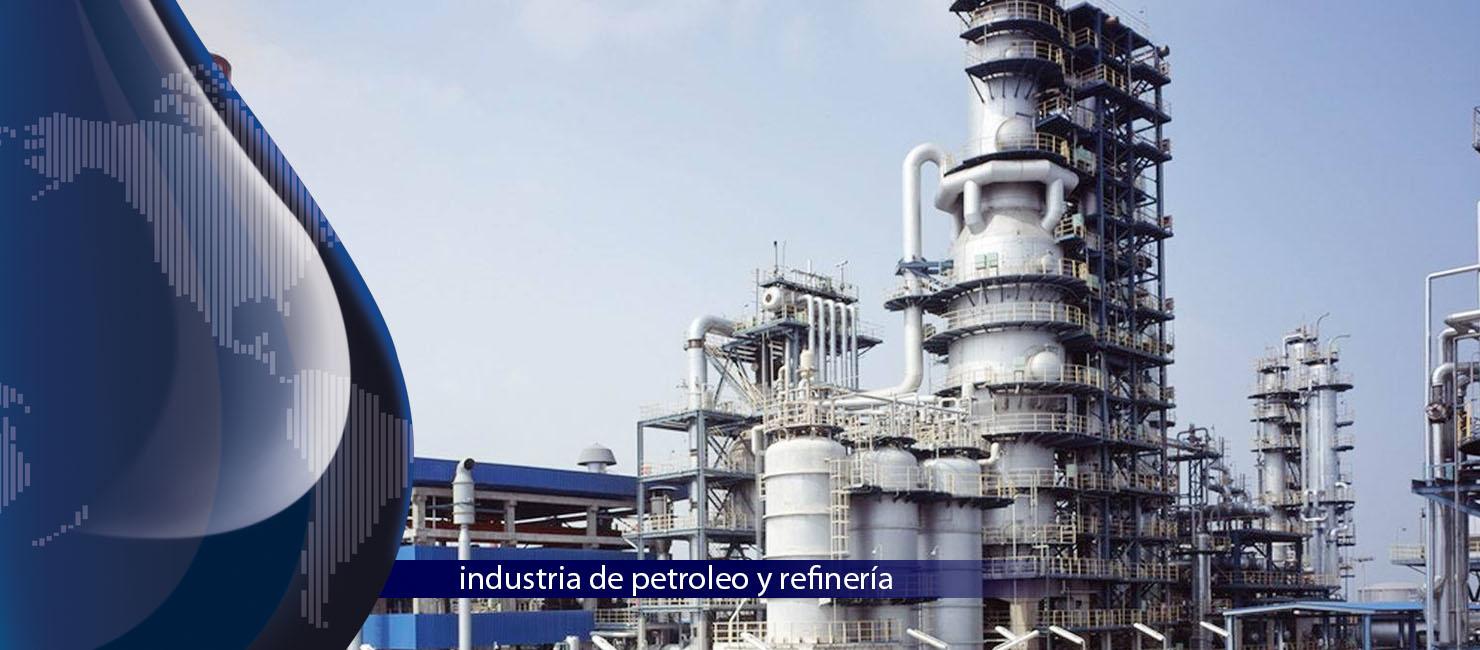 Petroleo y refinación, Poliductos e industria del gas, Sector industrial, Biocombustibles, Minería, Cemento, Metalúrgico, Sidurúrgico, Química, Farmacéutica, Control del agua, Cerveza, Azúcar, Alimentos, Energético, Textil, Pulpa y Papel